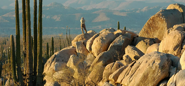 Baja California photo by DiscoverBajaCalifornia.com
